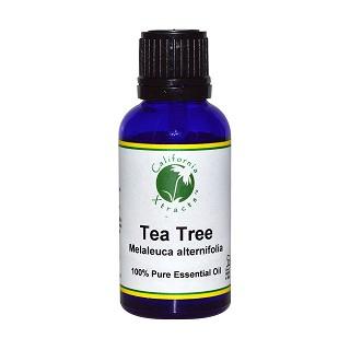 california xtracts 茶树精油